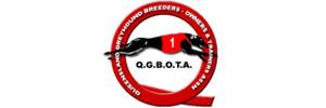 QGBOTA